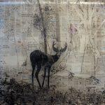 Martinj Hesseling à la Absolute Art Gallery